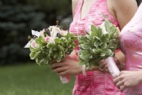 cheap wedding flowers = greenery