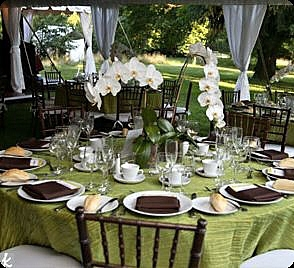 ideas for cheap wedding centerpieces - orchids