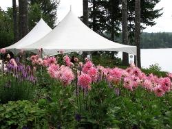 wedding reception places - botanical garden