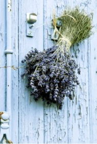 cheap wedding decorations dried lavender