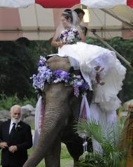 wedding reception places - zoo